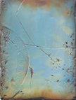 Sid Dickens: Elemental Beauty & Vision = Memory Blocks