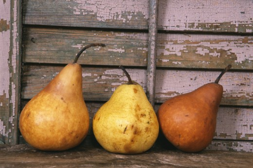 Image result for fall pears
