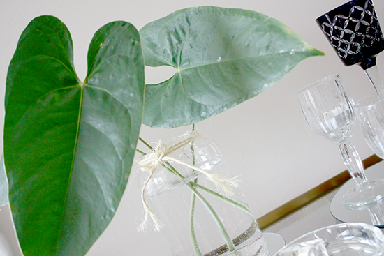 Large Leaves in Clear Vase