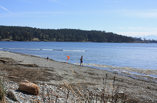 Whiffen Spit - Sooke BC