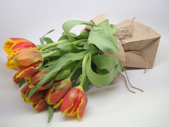 Tulips for Easter: DIY Ideas