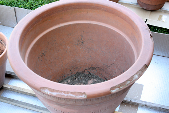 Chipped Terracotta Plant Pot
