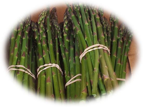 Organic Asparagus - Makaria Farm