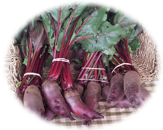 Organic Beets Makaria Farm