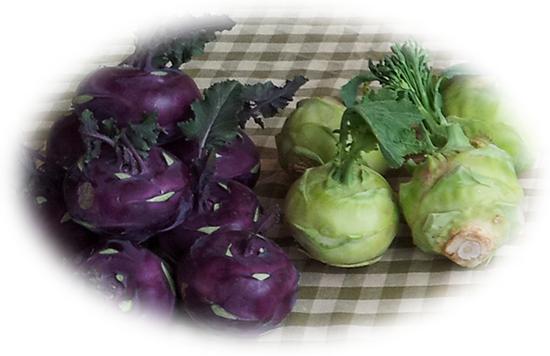 Organic Kohlrabi - Makaria Farm