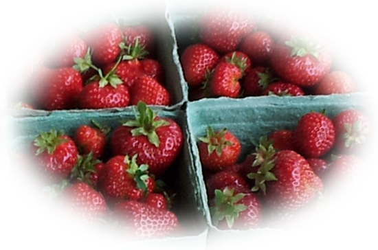Makaria Farm Strawberries - Cowichan Valley