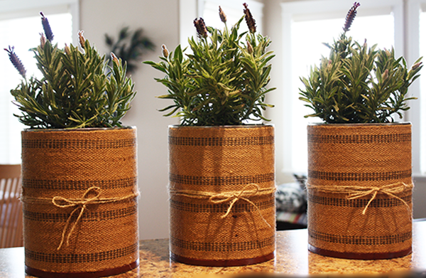 Vintage Upholstery Webbing Planters