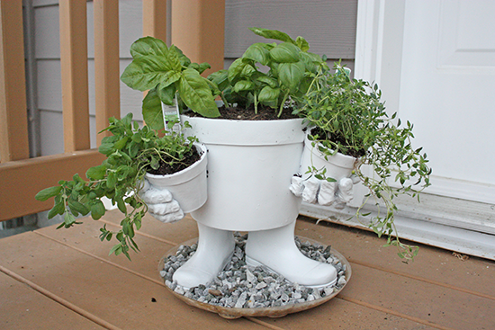 Herbs - Container Planting