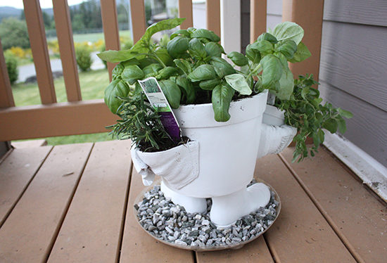 Rosemary & Basil - Container Planting