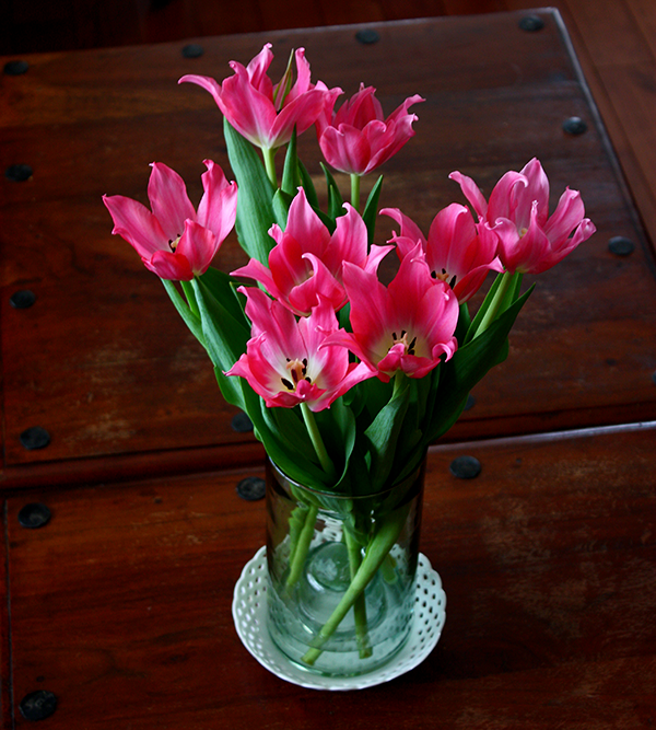Tulips in Votive Holder