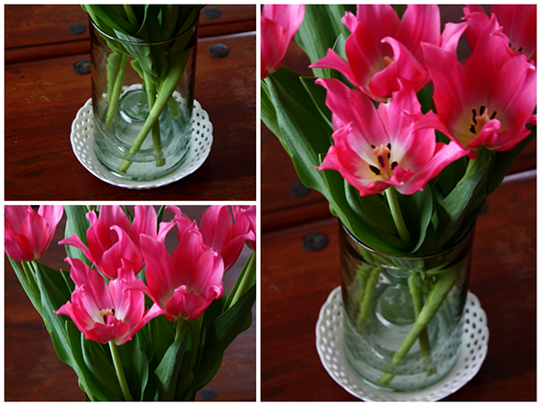 Tulip Collage