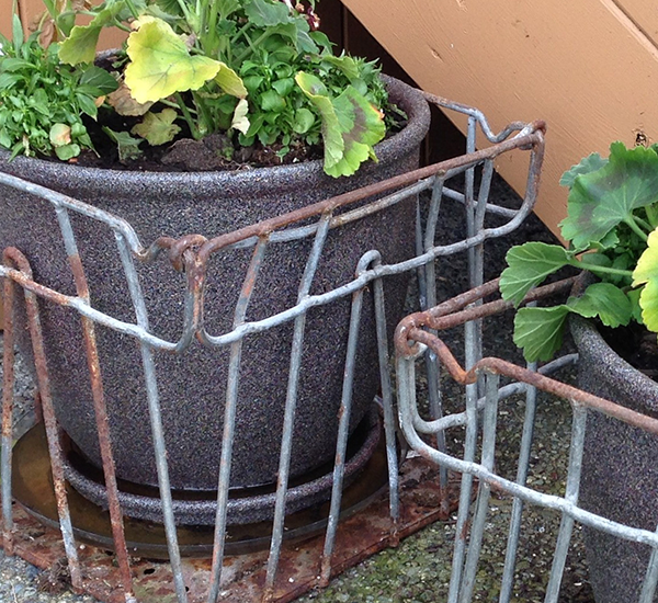 Vintage Metal Milk Crates Go Curbside!