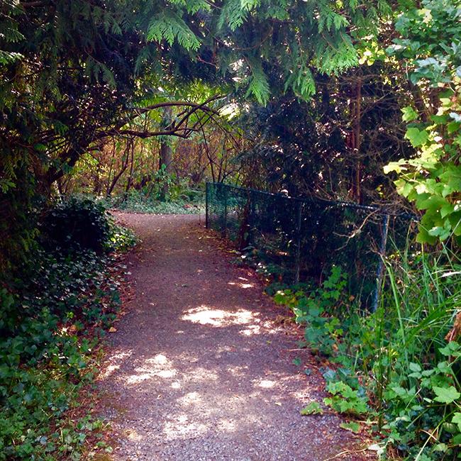 Secret Garden - Phyllis Street